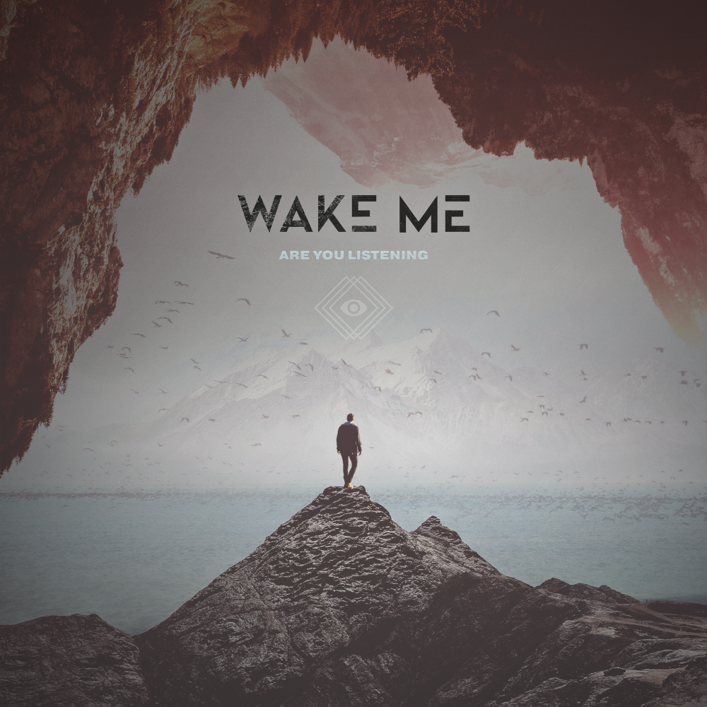 Wake Me - Are You Listening high res album cover